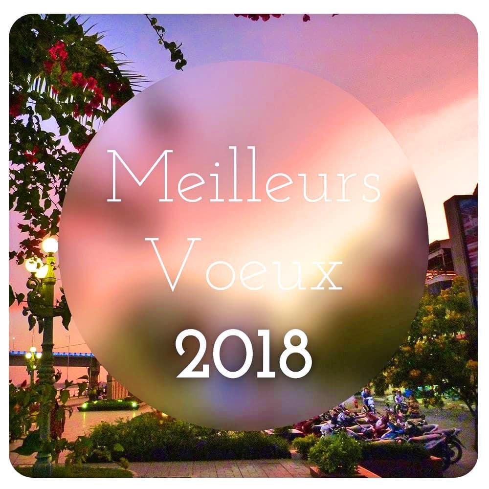 Bonne année - AR DESIGNER Amélie Rimbaud Designer graphique & Web à Nice contact@amelierimbaud.fr www.amelierimbaud.fr.jpg
